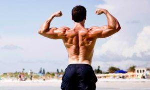 мышцы рук после тренировки