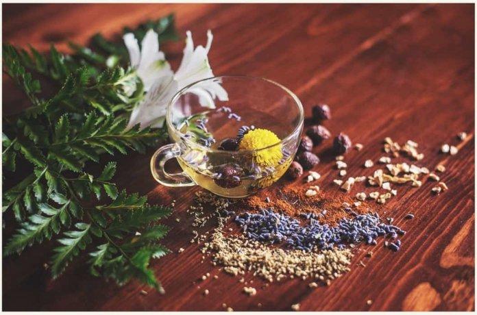Какой лучший чай для сна?  7 рецептов, которые стоит попробовать сегодня вечером